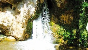hamam ouled dzaid